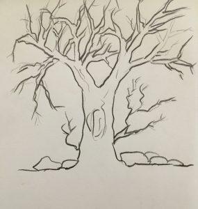 branch-shading-outline-nupurspeaks