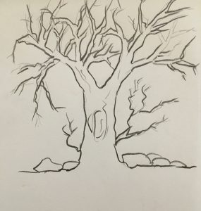 branch-shading-outline-nupurspeaks