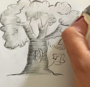 bush-tree-nupurspeaks-11