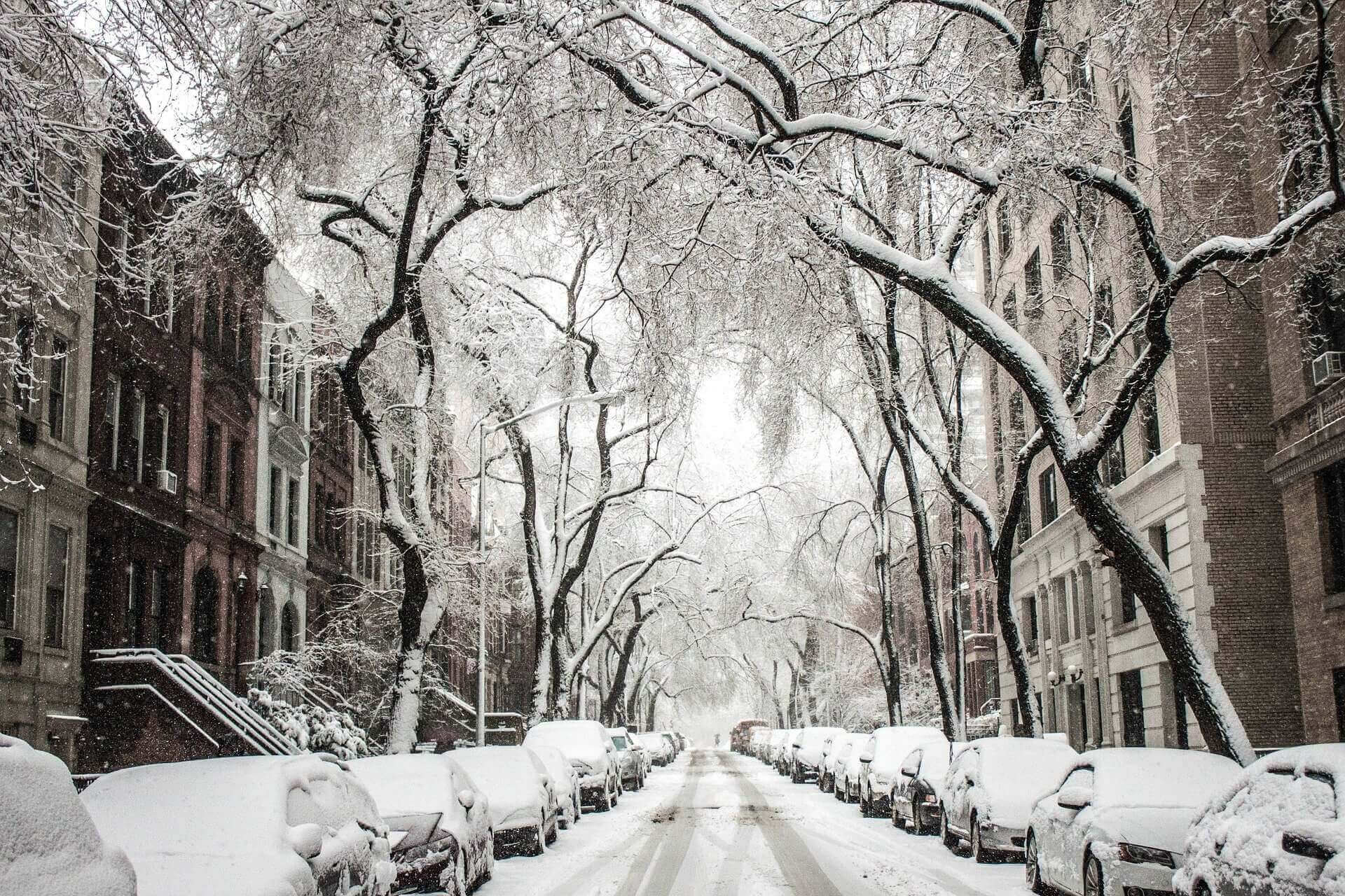 10 Productive Ways to Enhance Winter Break for College Students